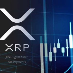 Ripple XRP: A Budding New Business